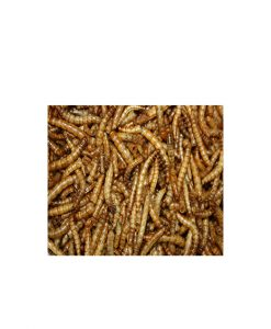 AHT Freeze Dried Mealworms 35G