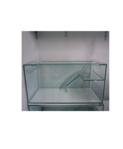 Glass Turtle Tank with Ramp